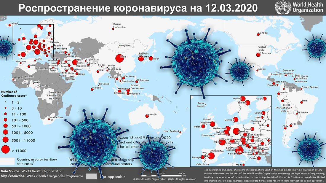 Всемирная организация здравоохранения — википедия. что такое всемирная организация здравоохранения