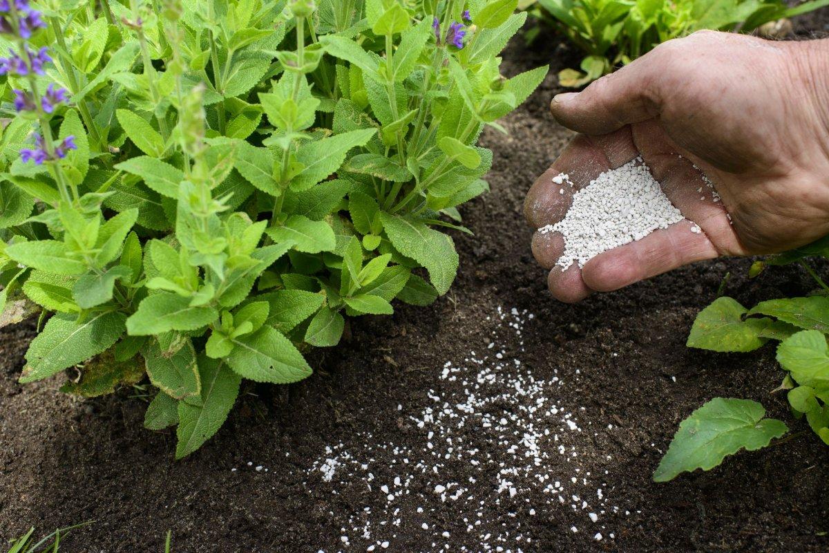 Минеральные удобрения – способы внесения, правила применения, особенности хранения