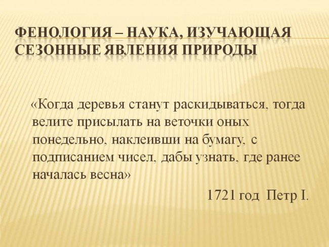 Фенология — википедия