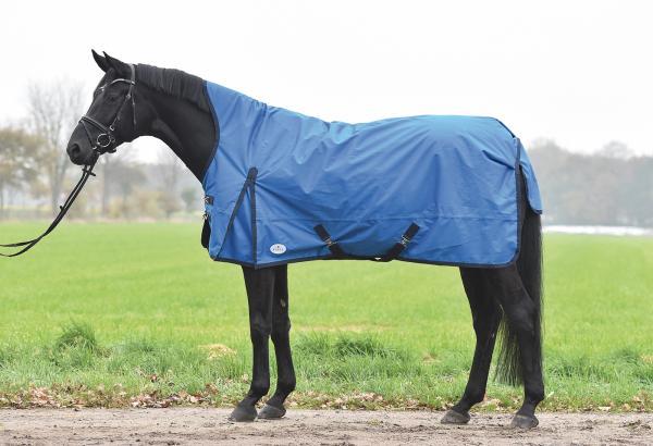 Попона для лошади: функции и разновидности