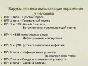 Виды герпеса - список, характеристики, проявления