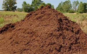 Перегной (21 фото): что это такое? применение природного удобрения из перегнивших растений. из чего еще он состоит и чем отличается от навоза?