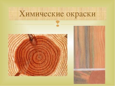 Виды пороков древесины: фото с описанием, чем можно обработать древесину от гниения, возгорания и насекомых