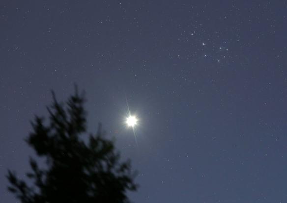 Плеяды — самое яркое звёздное скопление
