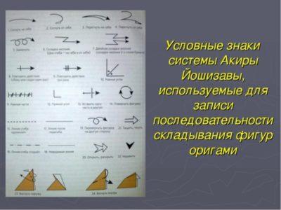 Что такое топография в анатомии? топографическая анатомия
