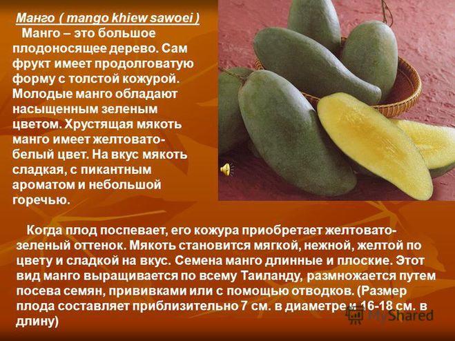 Список названий фруктов и ягод по алфавиту