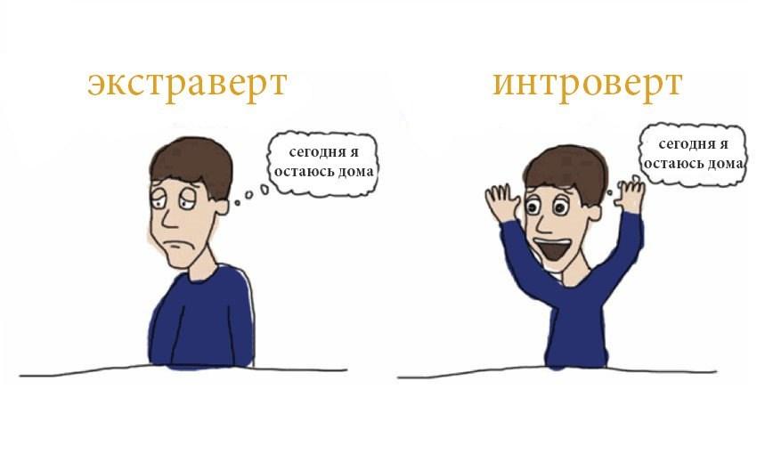 Кто такой интроверт, экстраверт и амбиверт