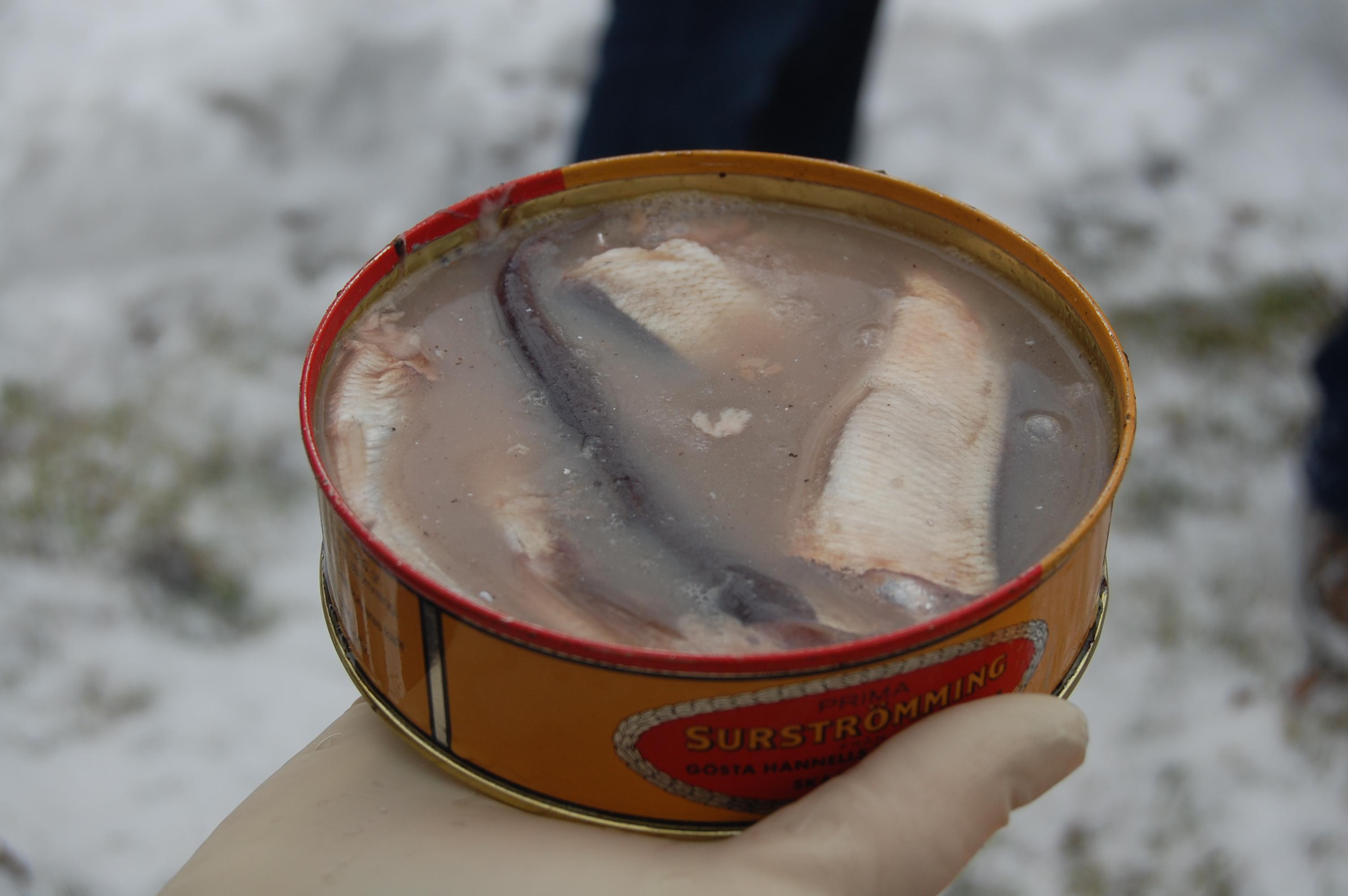Сюрстрёмминг – необычный норвежский деликатес
