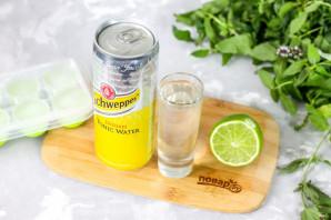 Вред джин-тоника для организма. напиток джин тоник: вред это или удовольствие