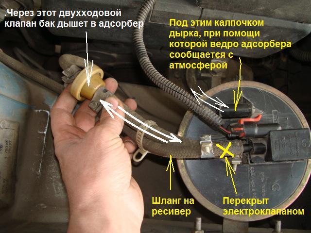 Адсорбер: устройство и принцип работы, что это такое в автомобиле