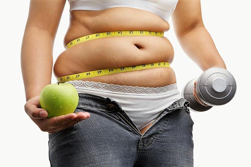 Как правильно делать читмил при похудении, основные ошибки |