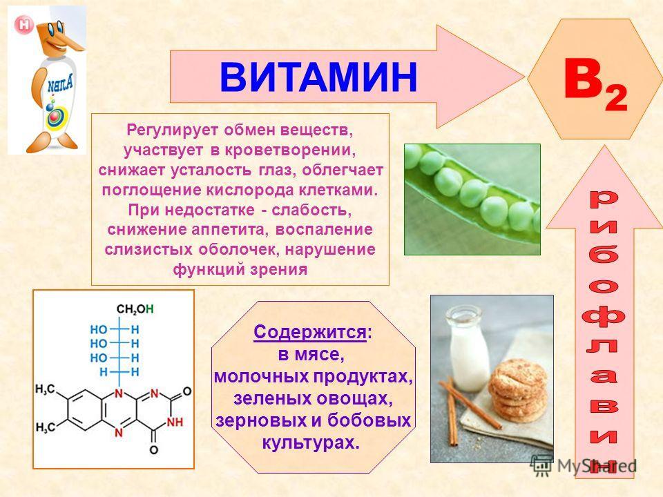 Рибофлавин (в2): это какой витамин, инструкция по применению, в каких продуктах содержится, для чего нужен