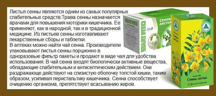 Александрийский лист: польза, применение в народной медицине