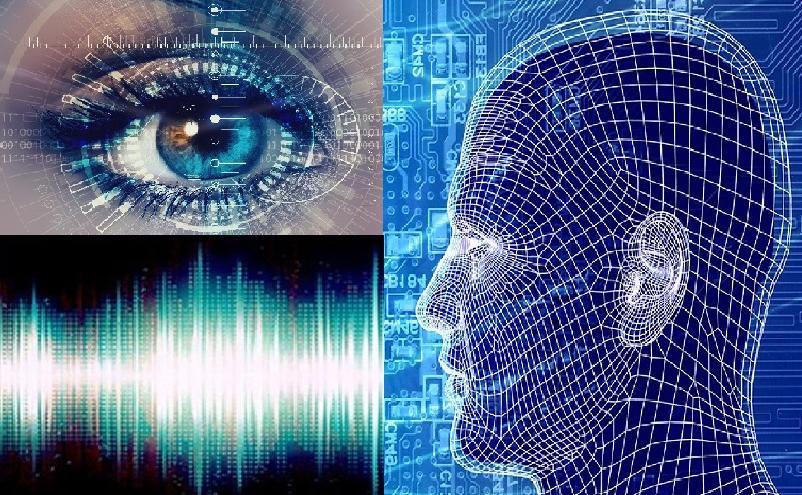 Биометрия: что это такое, как и для чего собираются данные