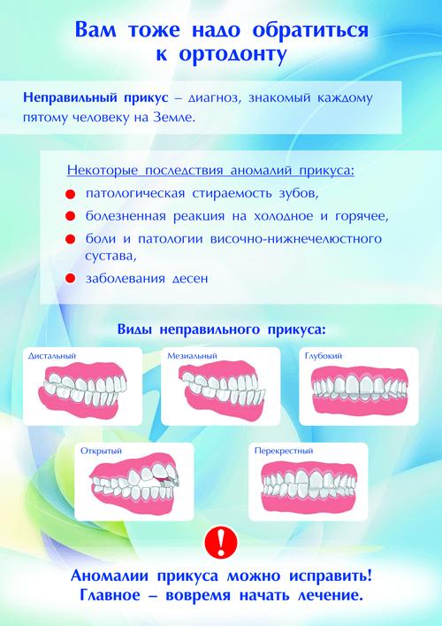 Строение зуба человека: внешнее и внутреннее, схема, картинки и фото