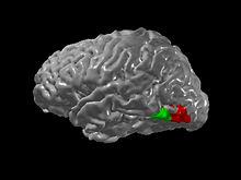 Что такое синестезия | блог пухлого