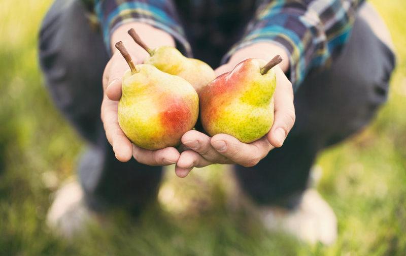 Сила щедрости во всех сферах жизни — колесо жизни