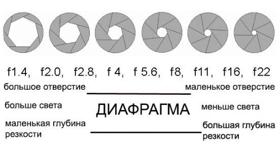 Сонатная форма - это: определение, разделы, теория музыки, анализ, экспозиция и произведения