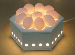 Овоскоп: что это, как проверять яйца, как сделать своими руками