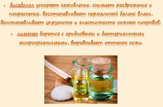 Камфорное масло: чем полезно и опасно