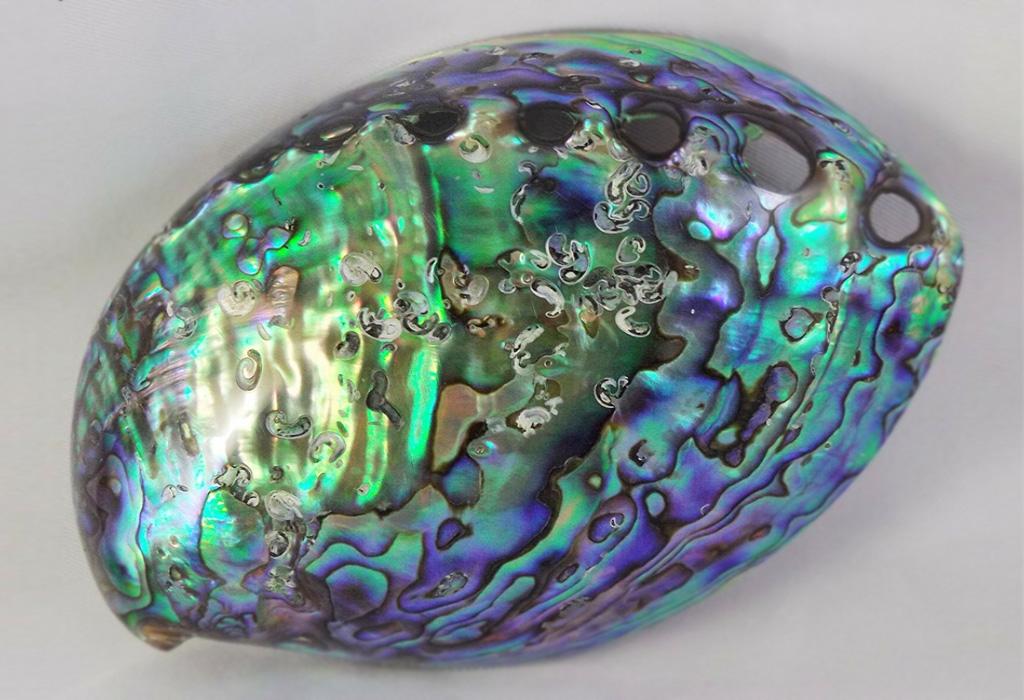Камень перламутр: свойства, значение, кому подходит по знаку зодиака