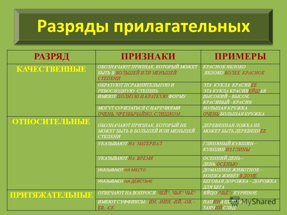 Притяжательные прилагательные в русском языке. примеры