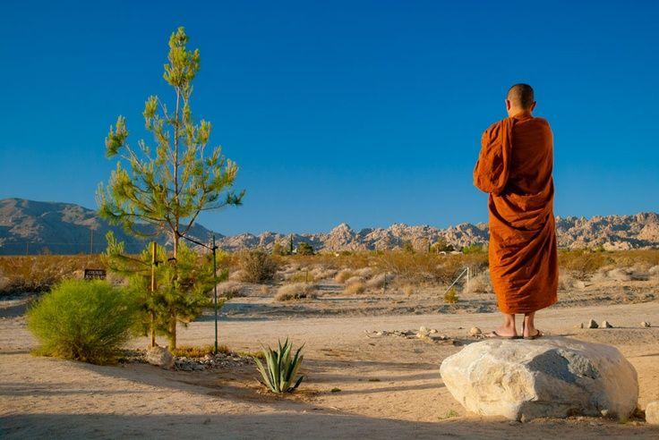 Медитация випассана: что это, техника выполнения практики, а также информация о курсах