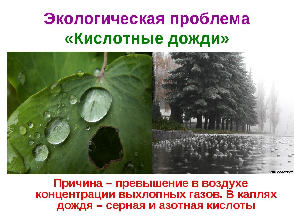 Кислотные дожди: причины возникновения и последствия