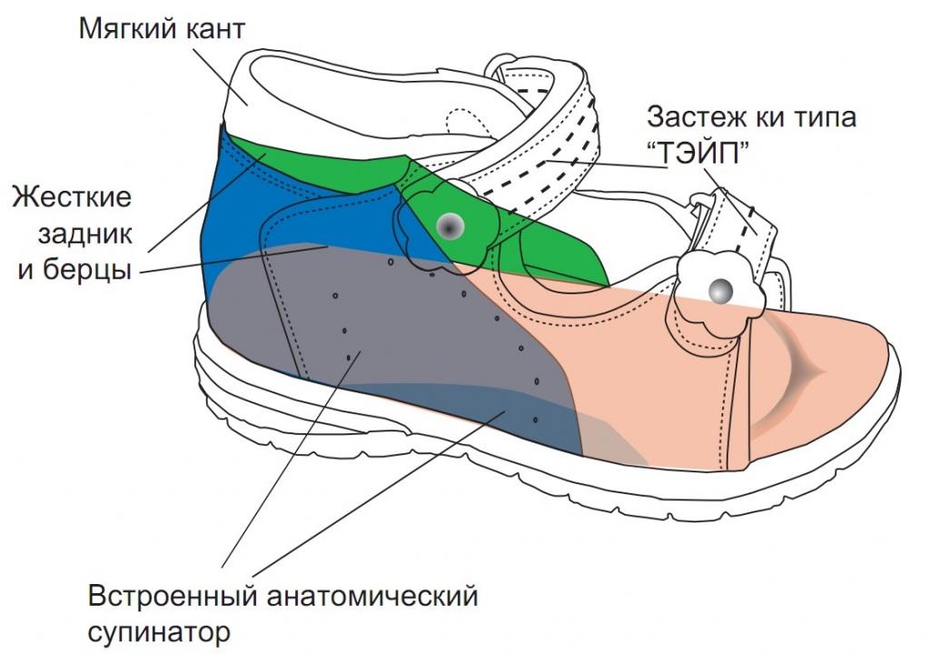 Что такое супинатор в обуви, его назначение и разновидности