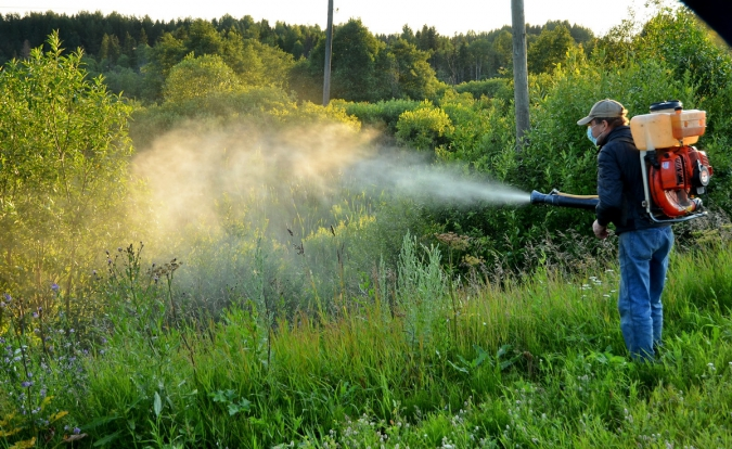 Почвенные гербициды - особенности применения и эффективность