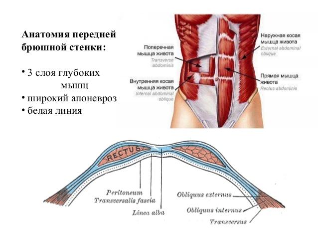 Апоневроз подошвенный: что это такое, где находится, симптомы и лечение воспалений апоневроза стопы