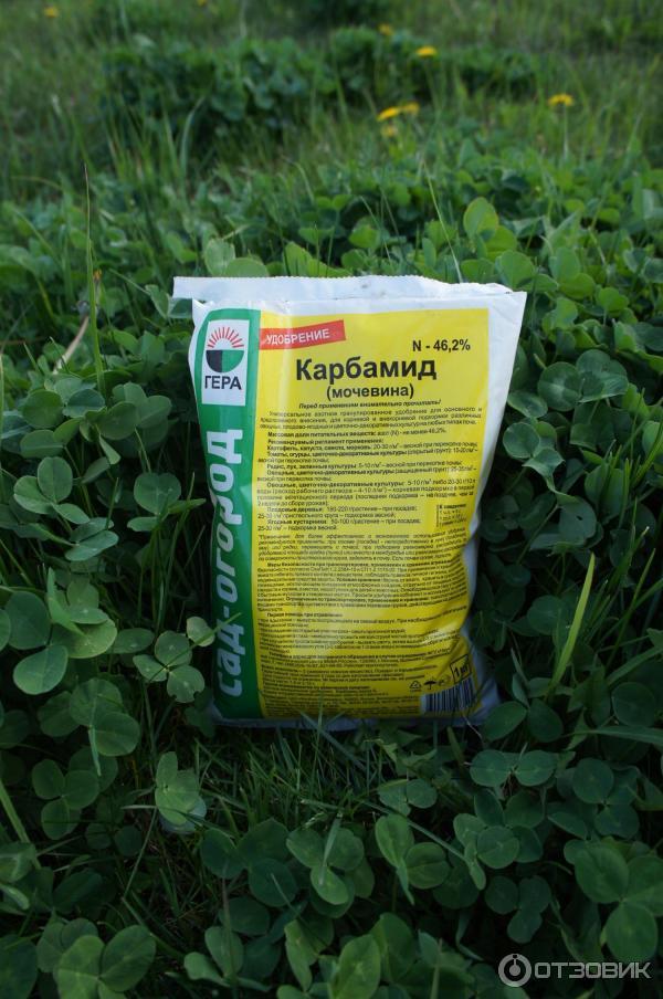 Мочевина – удобрение, применение на огороде, в саду карбамида