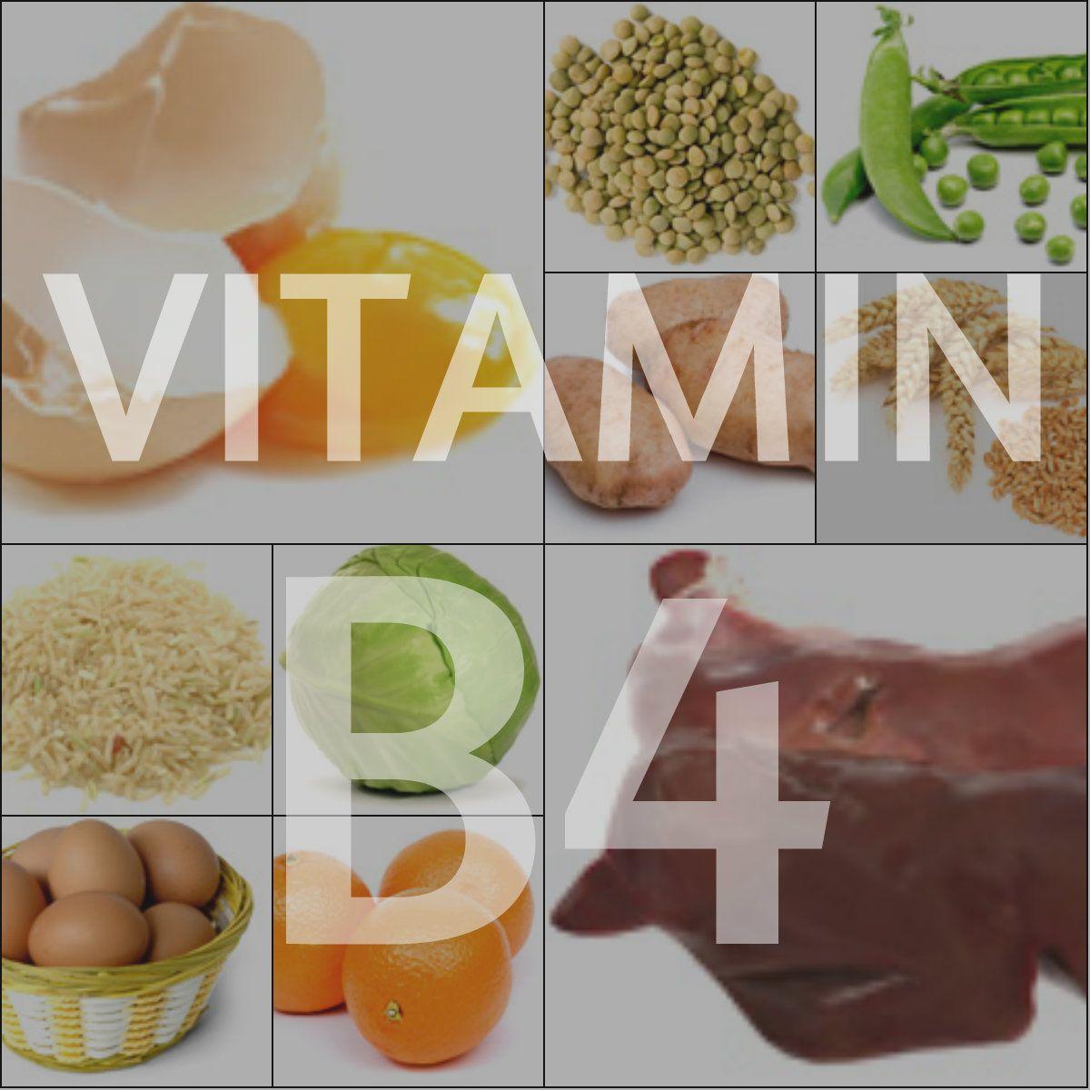 Холин (витамин в4) – функции, свойства, роль в организме