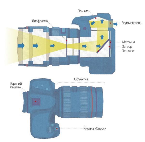 Что такое цифровой фотоаппарат: устройство, принцип работы