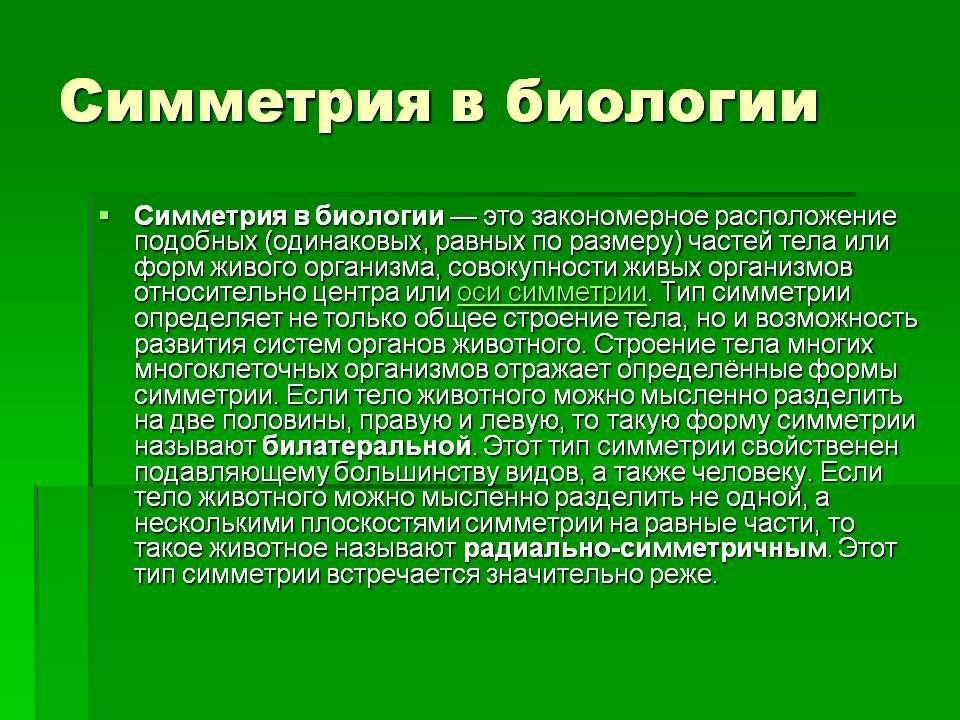 Симметрия (биология)