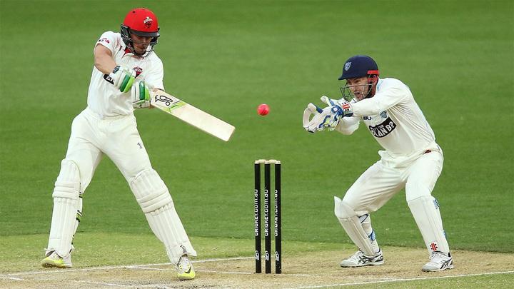 Как правильно ставить на крикет – советы, рекомендации, букмекеры