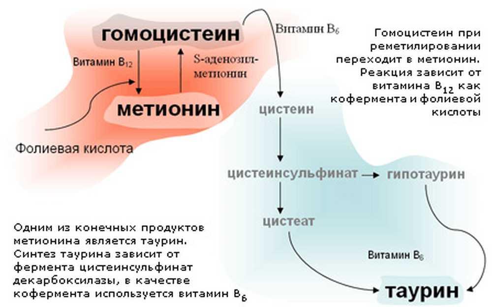 Метионин | химия онлайн