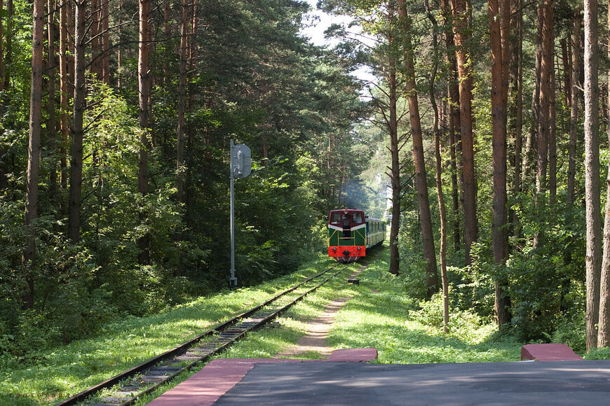Детская железная дорога, волгоград. режим работы, официальный сайт, расписание 2020, адрес, как добраться — туристер.ру