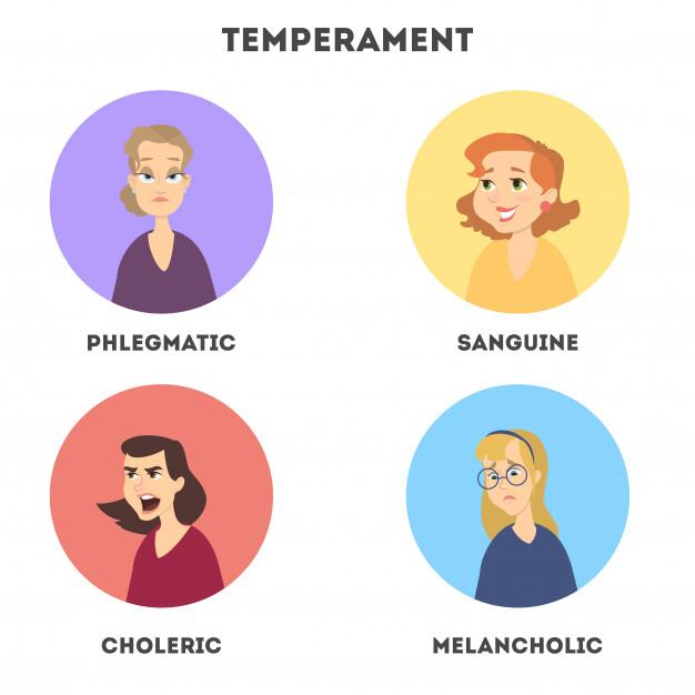 Темперамент – флегматик