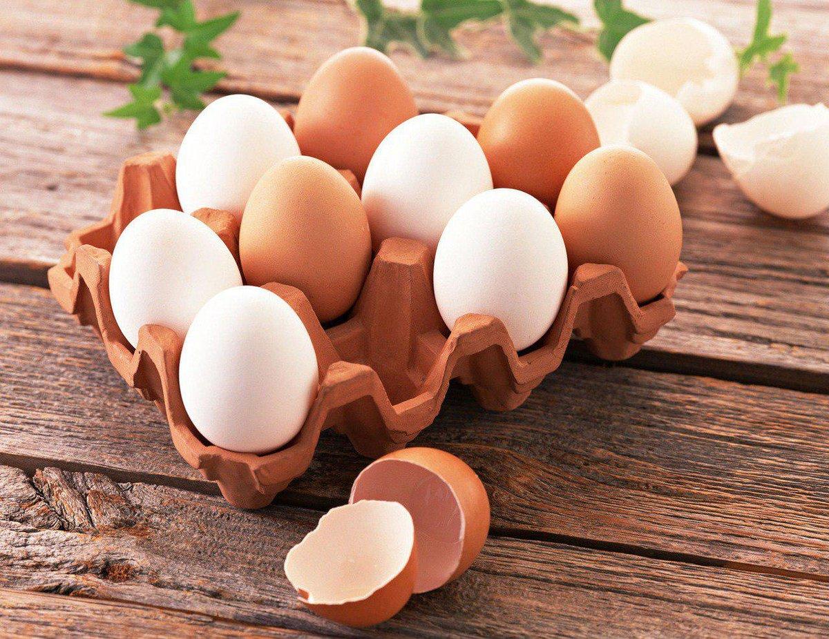 Строение яйца – 10 фактов, о которых вы и не догадывались ???????? | курочка | яндекс дзен
