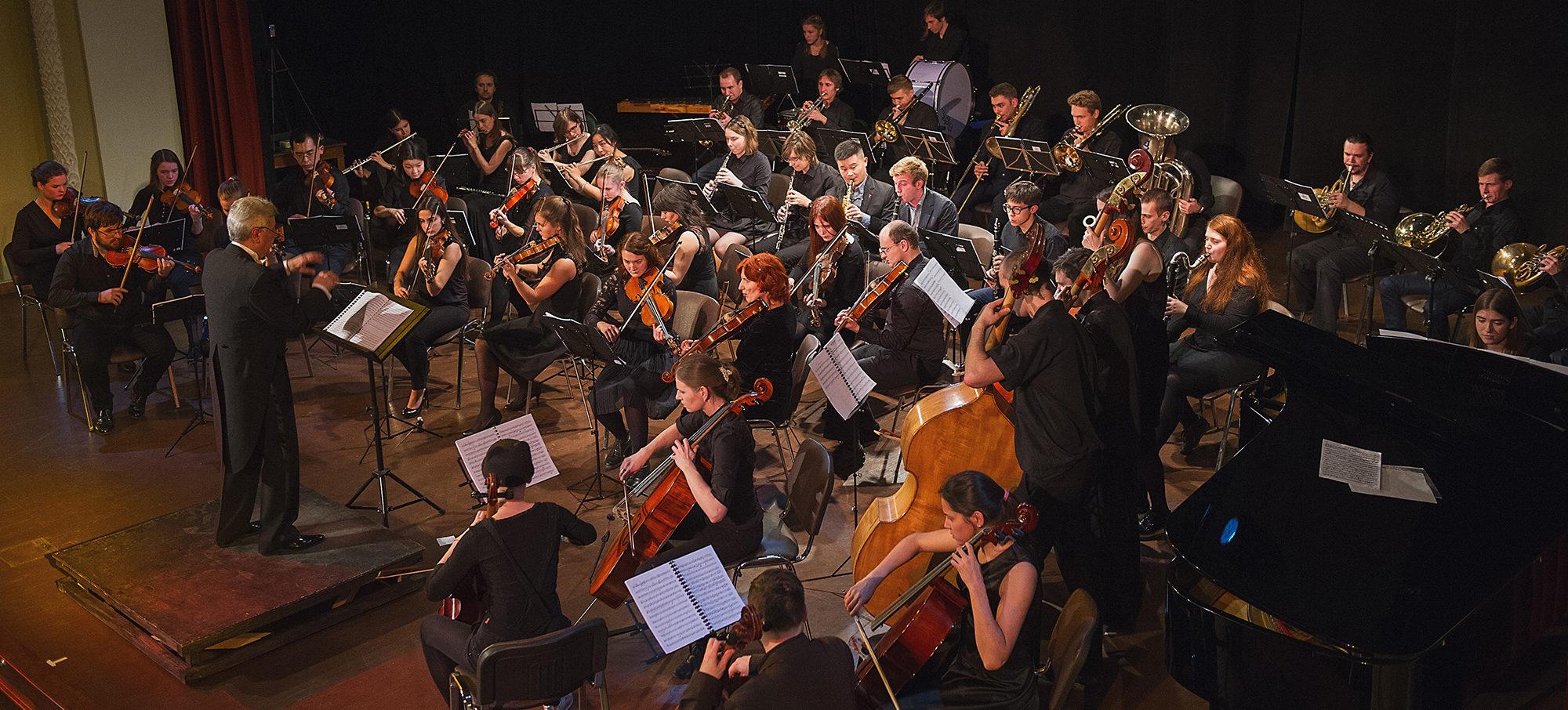 Виды оркестров, исполняющих инструментальную и симфоническую музыку :: syl.ru