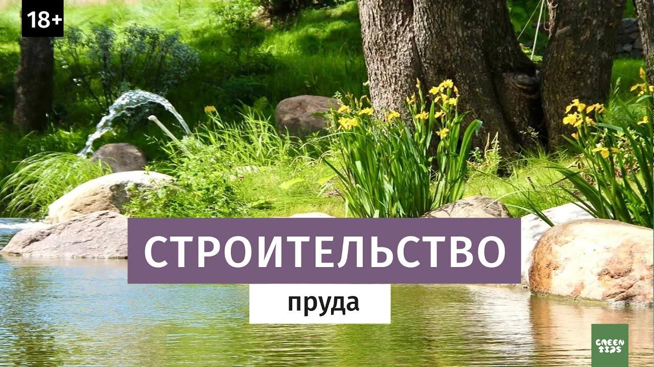 Пруд — википедия. что такое пруд