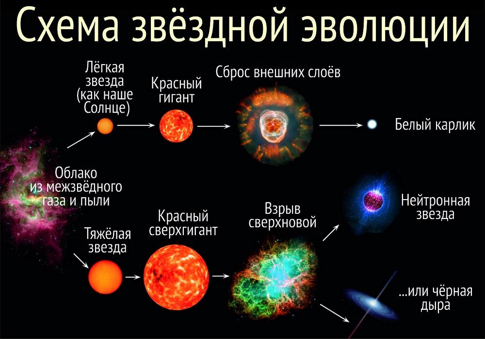 Рождение и этапы эволюции звезд - звездный каталог. наша планета и то, что вокруг неё
