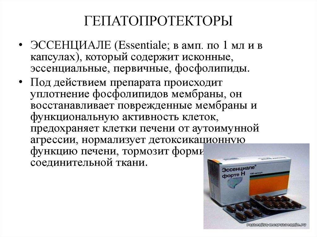 Гепатопротекторы: препараты, их классификация и свойства