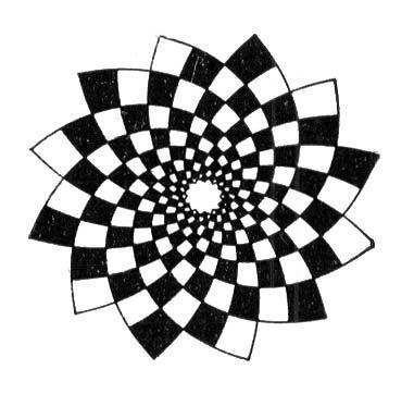 Симметрия в математике и окружающем нас мире. 8-й класс