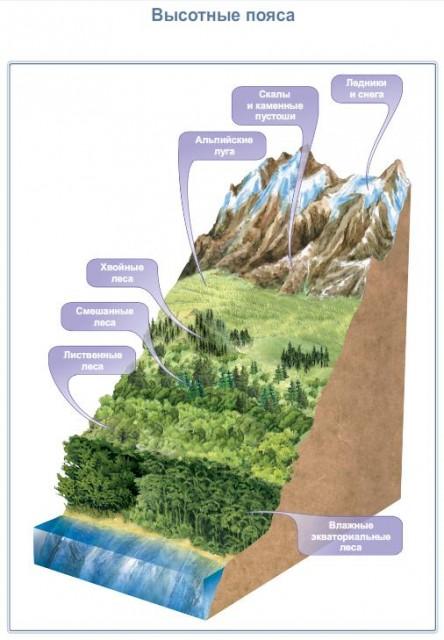 Природные комплексы