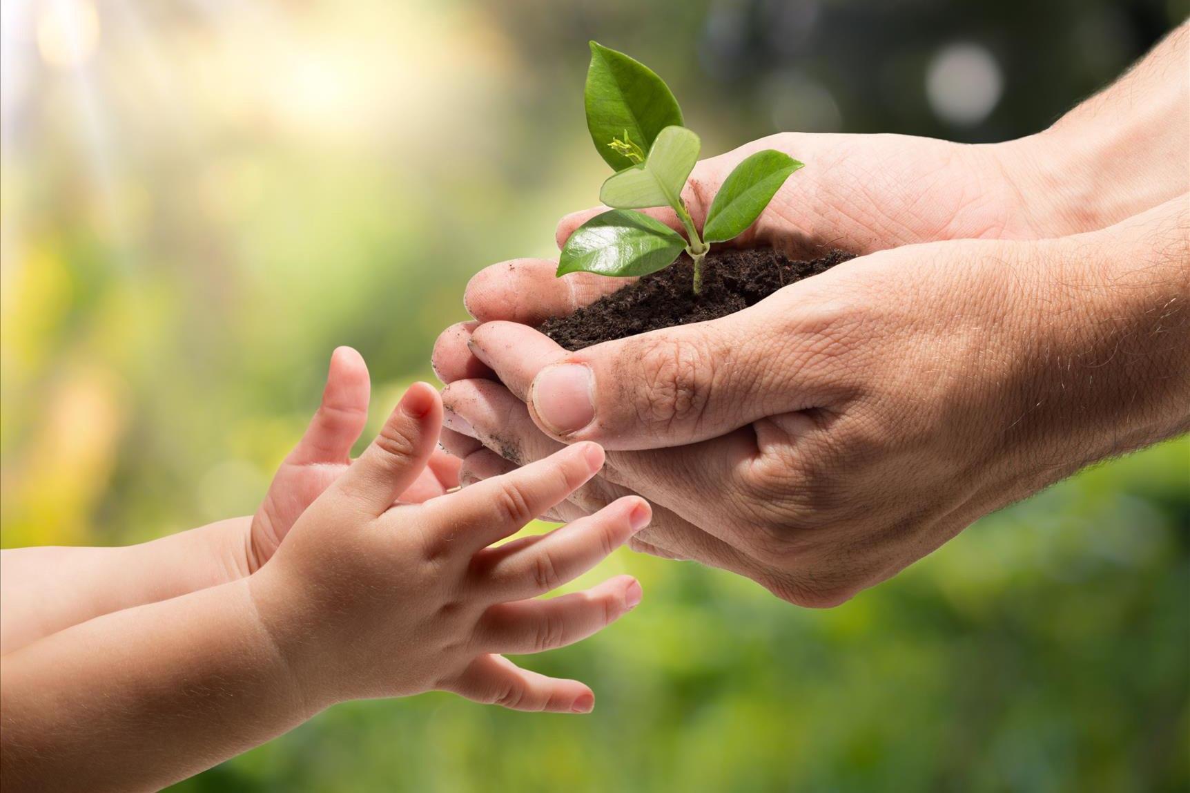 Что такое доброта и как стать добрее?