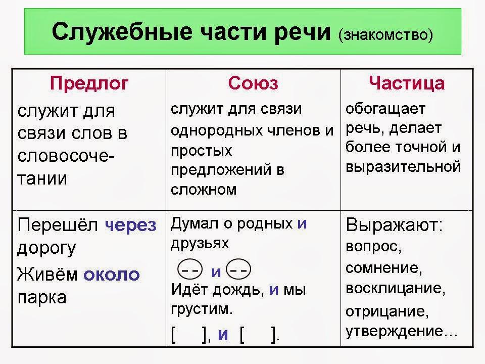 Части речи русского языка – какие бывают, краткое определение