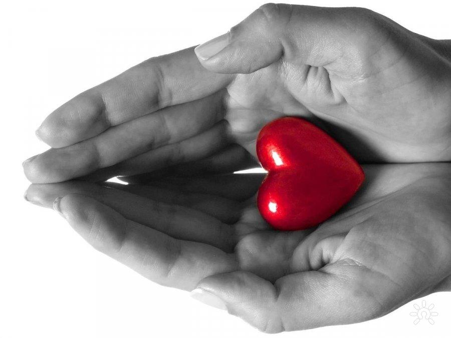 Отношения и любовь между мужчиной и женщиной