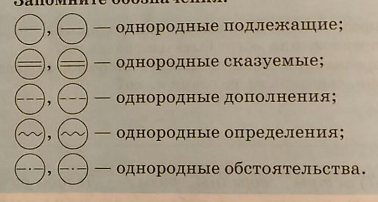 Что это - однородное сказуемое, и какова его роль в предложении